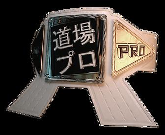 Dojo Pro White Belt