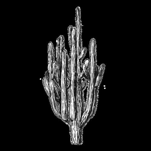 "Антонина Сотникова ""Cactus"""