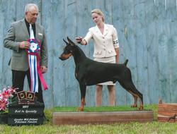 8-6-17 greater mid ontario dog fanciers
