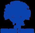 website blue logo.png