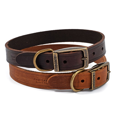 Ancol Latigo Leather Dog Collar