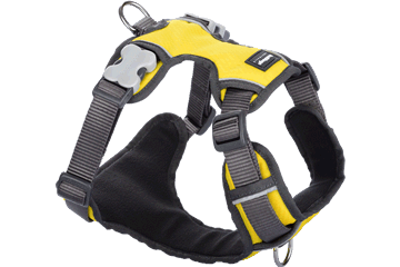 Red Dingo Padded Harness Yellow