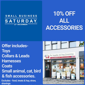 Small Business Saturday 10% Off