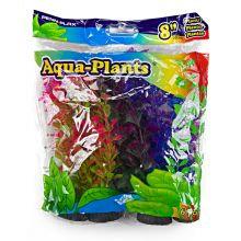 Aqua Plants Coloured Plant 6pk 8 inch