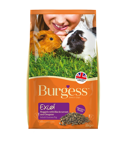 Excel Guinea Pig Nuggets with B/currant 2kg