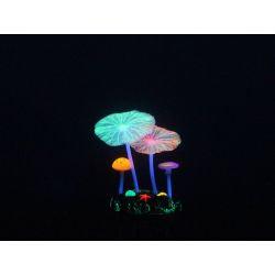 Aquarium Lumo Mushroom Lotus 10cm
