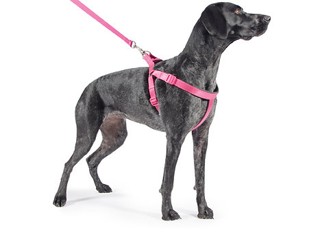 Ancol Padded Nylon Dog Harness Pink
