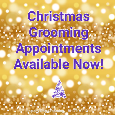 Christmas Grooming Appointments