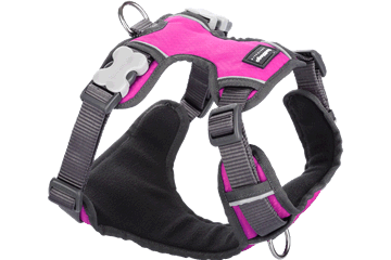 Red Dingo Padded Harness Pink