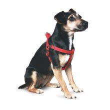 Ancol Padded Nylon Dog Harness Red