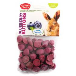 Critters Choice Blueberry Buttons 40g