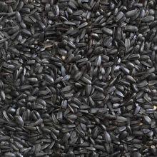 Black Sunflower Seed 20kg