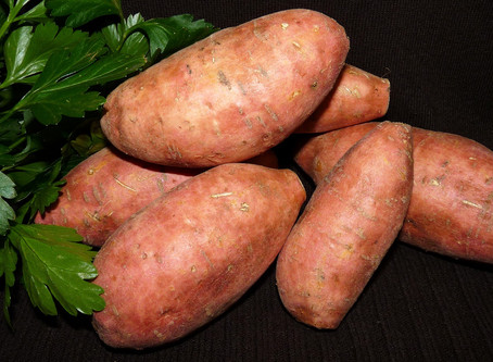 Why Sweet Potato?