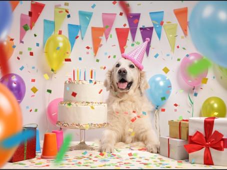 Happy Birthday to Us!! 🥳