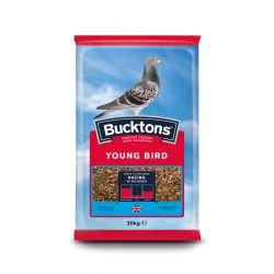 Buckton Pigeon Young Bird 20kg
