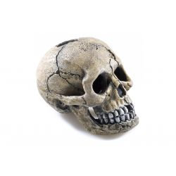Classic Ornament Spooky Skull 8.5cm