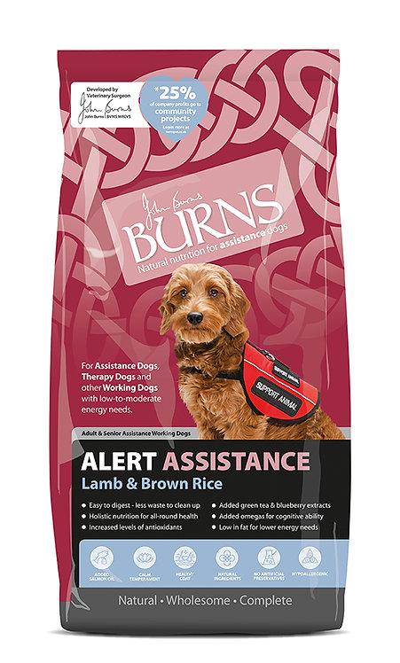 Burns Alert Lamb & Brown Rice Dog Food 12kg