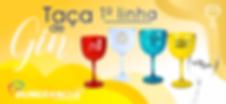 Taça de Gin Belo horizonte Acrílico Pers