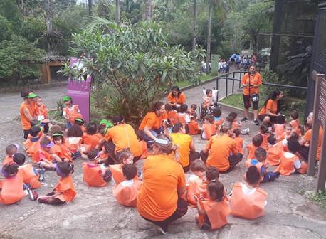 Visita ao zoológico do Parque Estoril - Infantil I