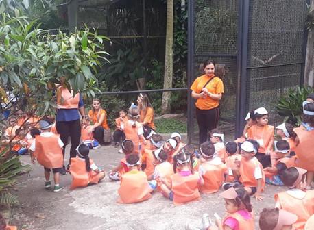 Visita ao zoológico do Parque Estoril - Infantil II