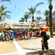 greenbear_festivals_24.jpgהדוב הירוק פסטיבלים