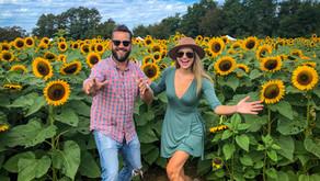 Sunflower Festival at Holland Ridge Farms