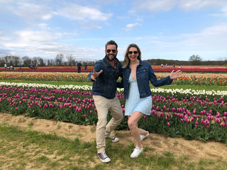 Tulip Festival At Holland Ridge Farms