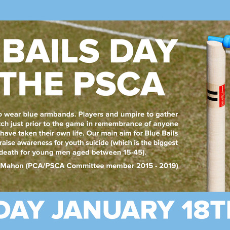 Blue Bails Day Sat Jan 18... Join in & help!