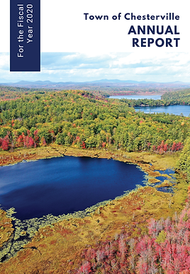 2020 Chesterville Report Cover.png