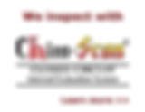 Chimney video scan, Chimney inspection, Chimney problem, chimney real estate inspection, chimney defect