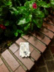 IMG-4108.jpg