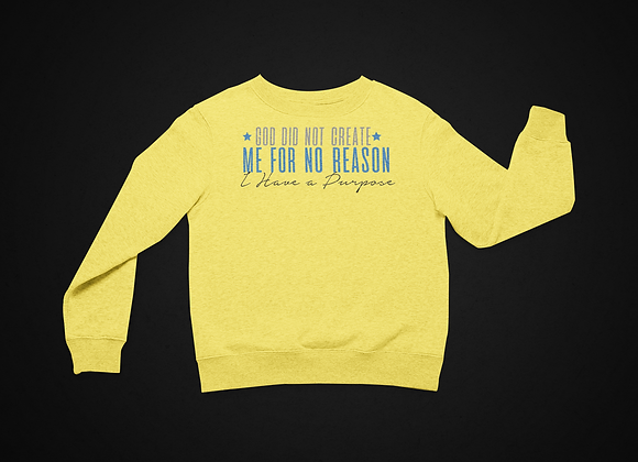 God Did Not Create Me For No Reason I Have A Purpose (Sweater)