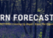 Learn to forecast.png