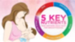 5 Key Nutrients for Breastfeeding.jpg