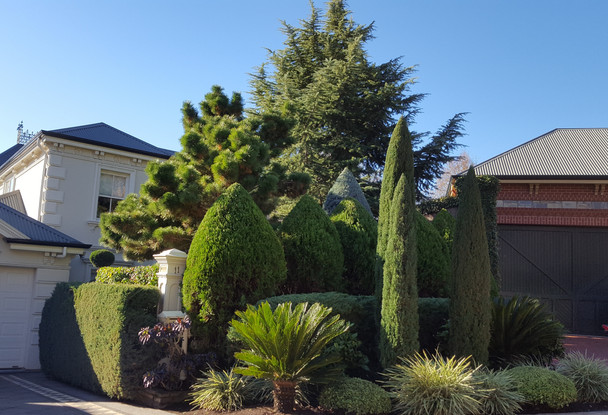 Specialist Topiary