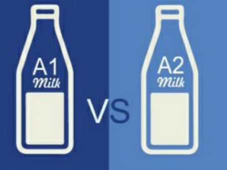 A2 milk: The elixir for the mankind