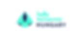 HT HUNGARY Logo 1 (blue).png
