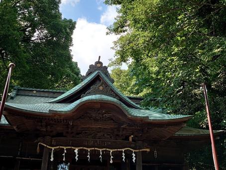 久しぶりに、地元の氏神様「谷保天満宮」に参拝に行ってまいりましたよ!参拝客は、私の他はほとんど見当たらず、蝉の声だけが、深閑な境内の森に響き渡っていましたよ!