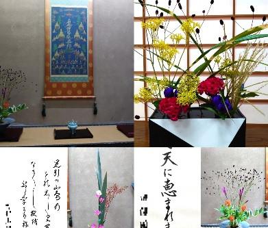 昨夜は、六本木の象寛書道教室のレッスンの日でしたが、たくさんの美しい生け花に、囲まれて、レッスンしましたよ。いつも美しいお花を、ありがとうございます!