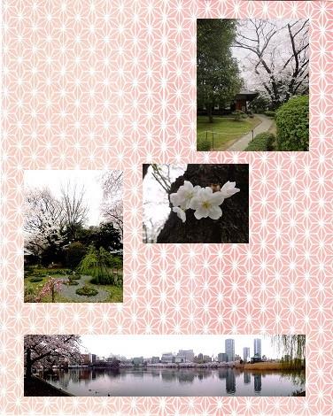 国立博物館庭園.jpg