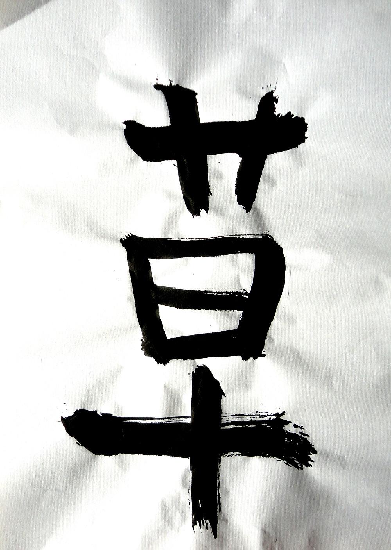 草.jpg