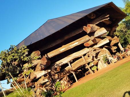 Aripuca, un parque ecológico que buscar concientizar sobre la tierra misionera