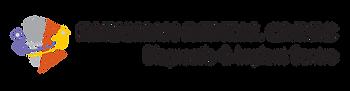 Dr Bhushan Logo-02.png