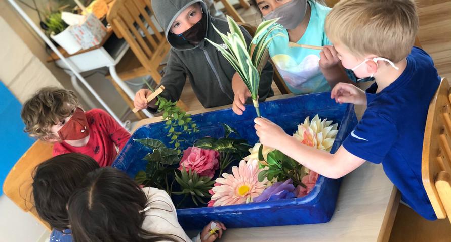 exploring our sensory-garden