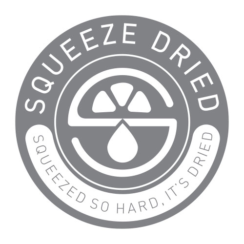 Squeeze-Dried-Branding-Webdesign-Graphic