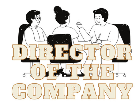 Director of the company under the companies Act 2013