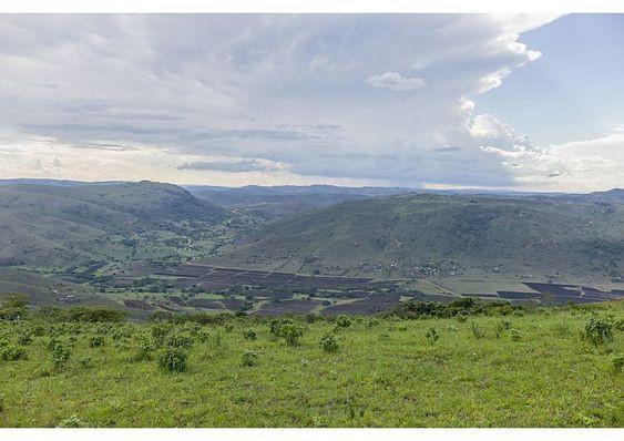 Q. My Homeland;Ekhaya.jpg