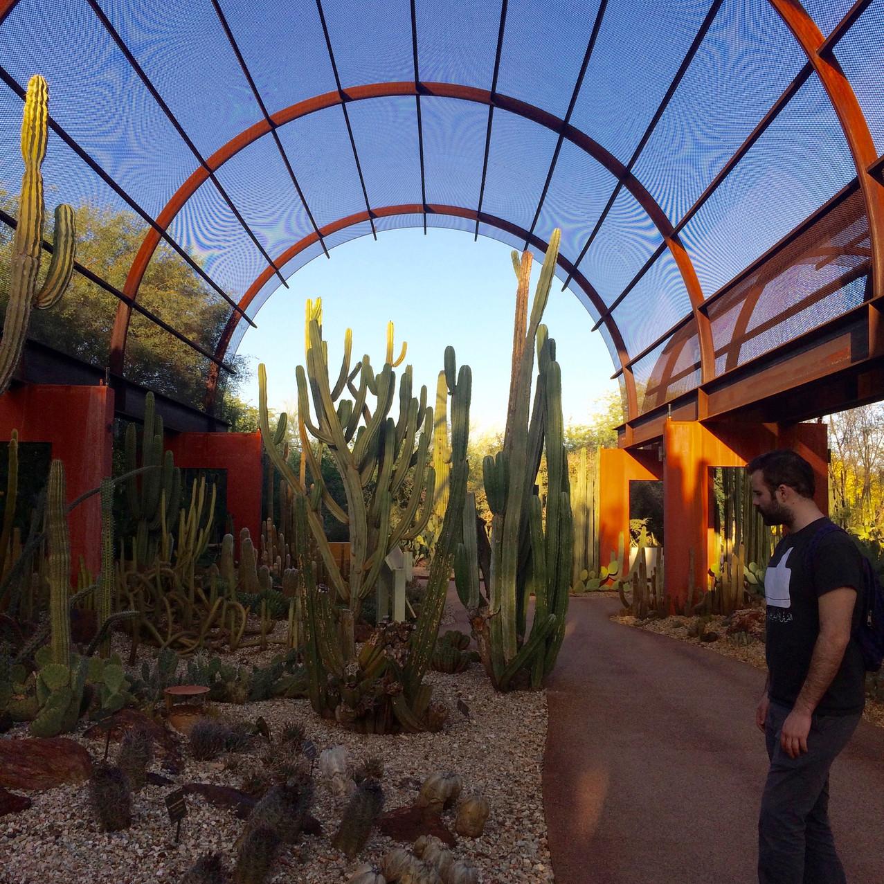 Phoenix Botanical Garden