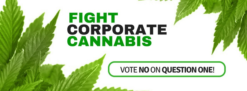 Image produced by Maine Votes No - a grassroots group of mostly Maine caregivers who are involved with the current medical marijuana program and oppose Question #1 via