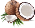 Coconut_transparent.png